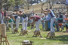 4777- Australian Axeman Association 300mm under hand event.