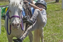 Clancey Whyman (4) of Mogilla - mounts her horse Crispy Cream at the Candelo Show.